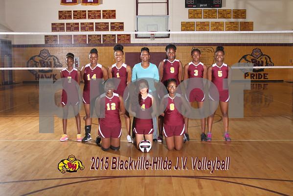 2015  Volleyball JV