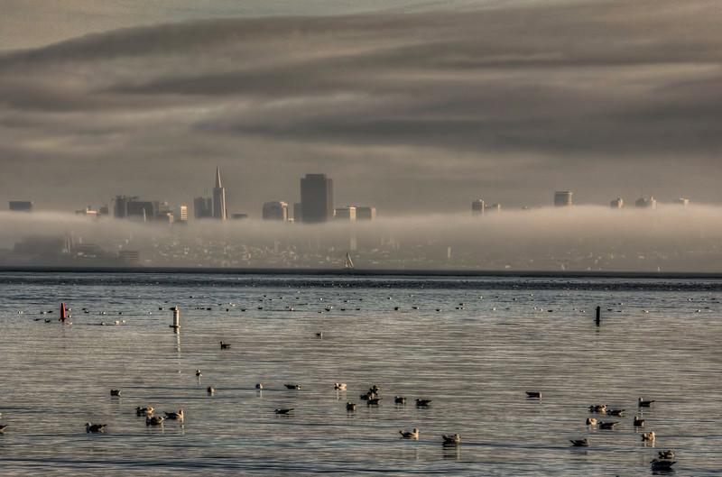 foggy-san-francisco-skyline-2.jpg