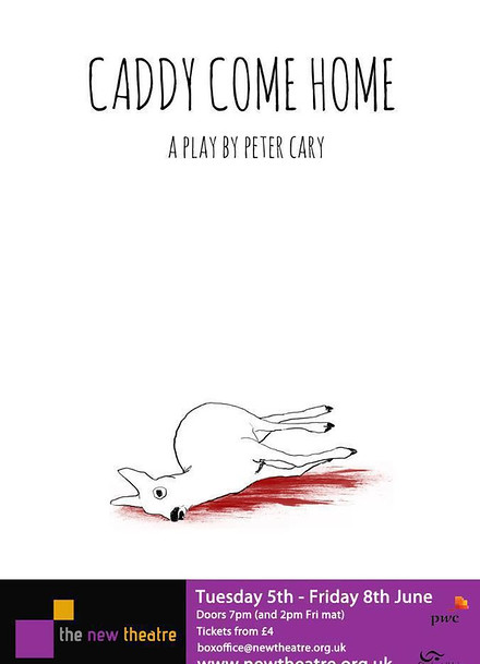Caddy Come Home poster