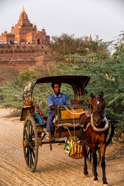 The horse carts ferry tourists to the 'sunset temple' to watch of course the sunset.  You can see them lined up on the roof top in the background.