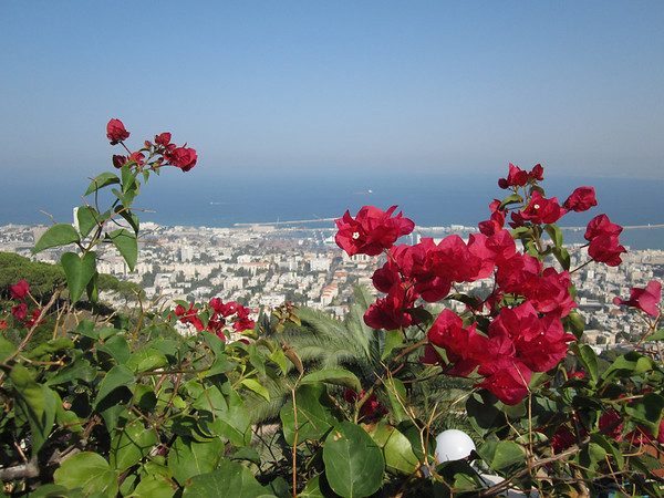 Tel Aviv - Nov 2010