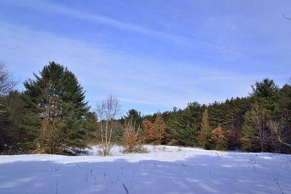 Beaver Lake Feb 2014