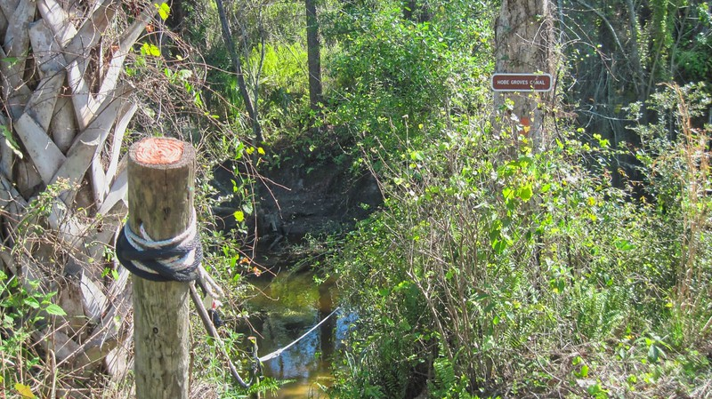Hobes Grove Canal