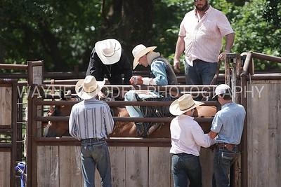 R Spade Ranch 7-19-2020