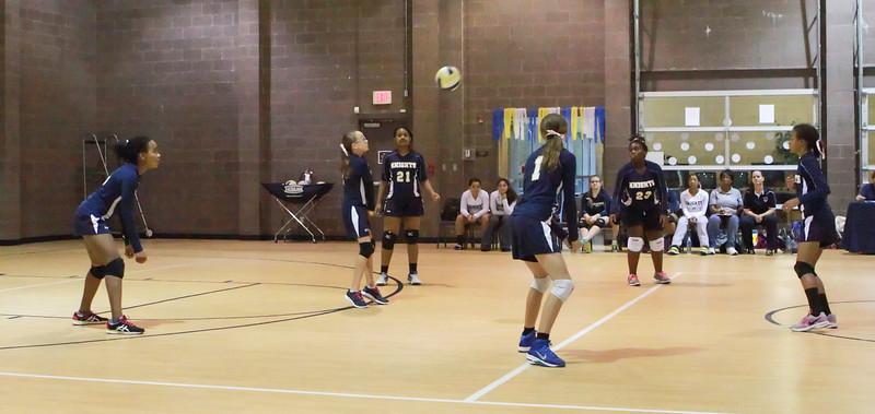 VCA-Volleyball-27.jpg