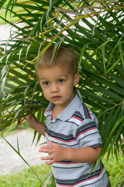 Family Session June 2015 - Alfred Clayton Photography (90).jpg