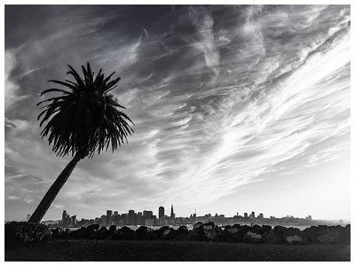 San Francisco: Black and White