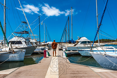 Haleiwa Harbor_7154