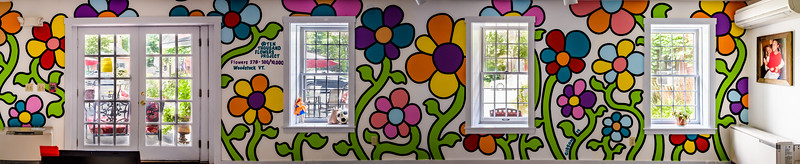 Finished Mural - _8506464-Pano.jpg