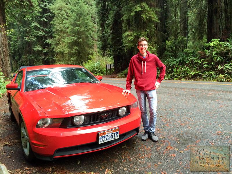 20141015_RedwoodsiPhone_0023.jpg