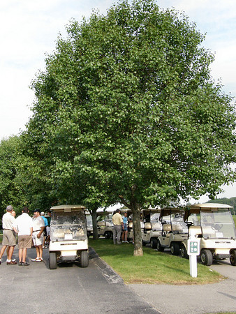 Hooksett Kiwanis Golf Tournament 2008