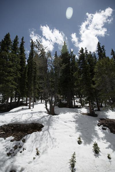 Colorado-34546.jpg