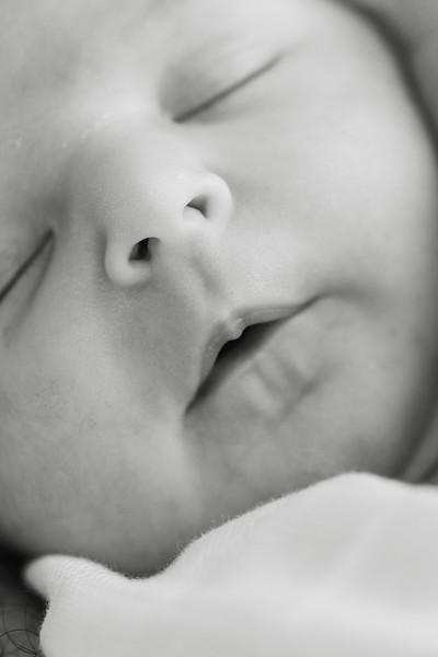 Newborn a l'estudi - Tomasa