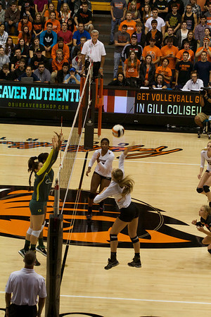 OSU vs UO VolleyBall
