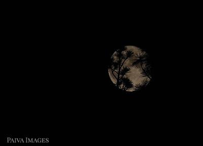 20200705 Moon