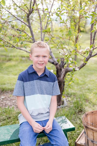 Harlow Apple Orchard