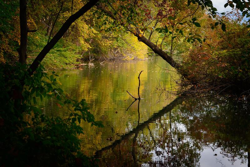 Reflections III-5888.jpg