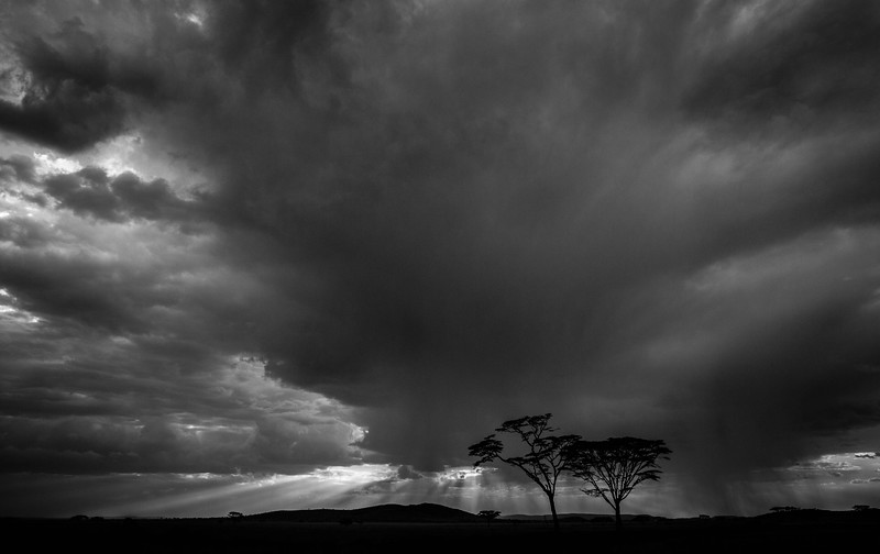 Rainstorm over the Serengeti, Serengeti National Park