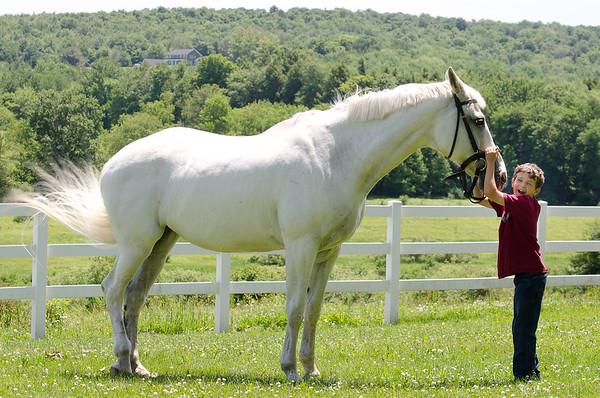 Cooperstown Equestrian Park • Waylon