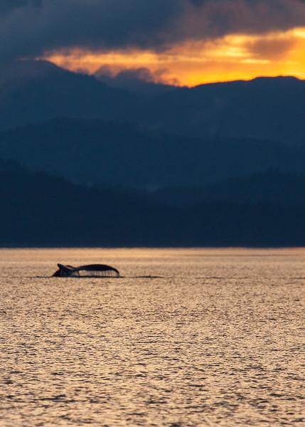 Alaska-154.jpg