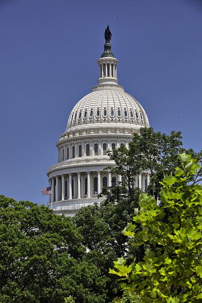 Capital Building Dome.jpg