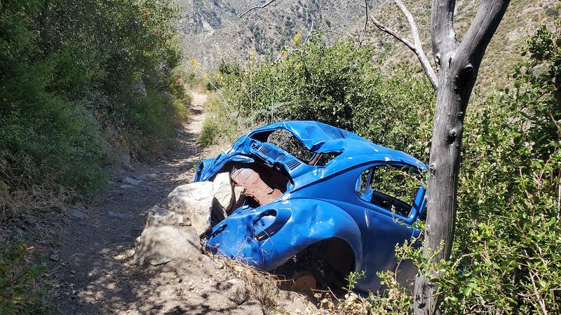 Blue Bug Trail Namesake