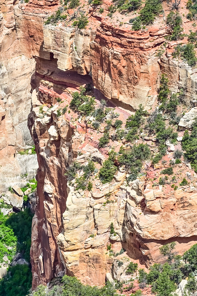 2019 Grand Canyon-331.jpg