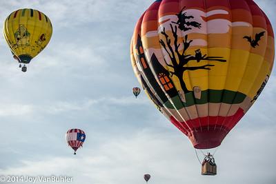 2014 - Michigan Challenge Balloonfest