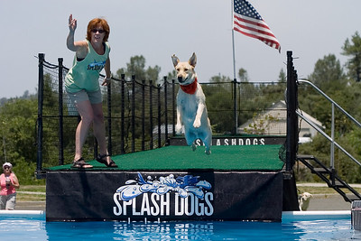 SplashDog Samples