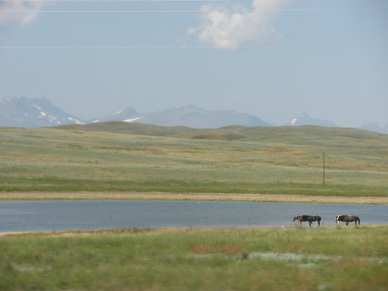 2008-07-24-YOCAMA-Montana_3332.jpg