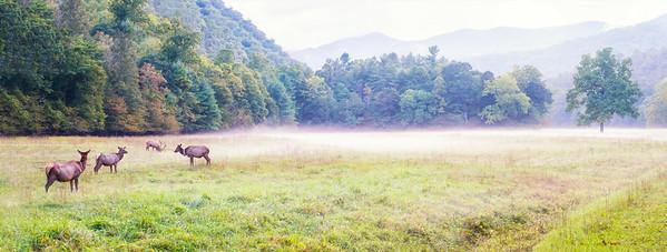 Smoky Mountain Foto Fest 2017