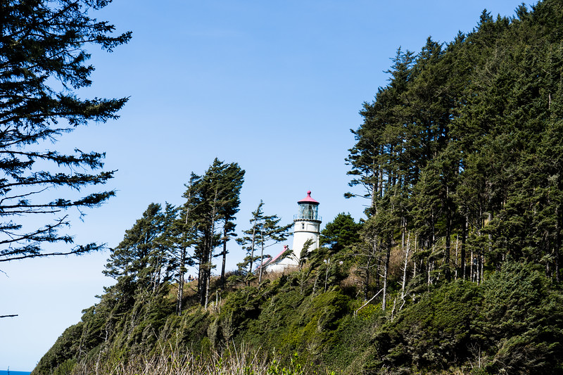 oregon coast vacation photography 2019-46.jpg