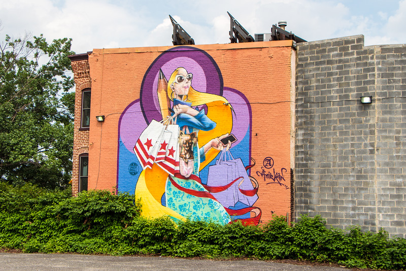 Mural - Southeast DC