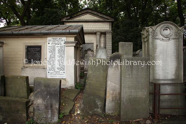 POLAND, Warsaw. Okopowa Jewish Cemetery. (9.2011)