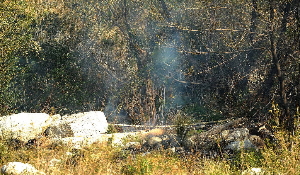 . Firefighters have five small brush fires under control Thursday afternoon in Waterman Canyon. The burn area for the five fires is about one acre, according to San Bernardino National Forest personnel. Firefighters are still managing the scene. A suspected arsonist, reportedly wearing a blue polo shirt and jeans, was seen running up the mountainside near Highway 18 and Old Waterman Canyon Road. San Bernardino police are searching for the suspect with the help of Sheriff\'s helicopter, 40-King. This is the same area where the 2003 Old Fire was set. The first fire ignited shortly before 3 p.m. near Highway 18 and lower Old Waterman Canyon Road, according to the California Highway Patrol website. San Bernardino City firefighters reported as they were putting out the first small spot fire, a person was setting a second blaze in the brush, according to reports. Then a short time later a third fire was reported. LaFonzo Carter/ Staff Photographer