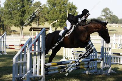 101010 USEA Horse Trial