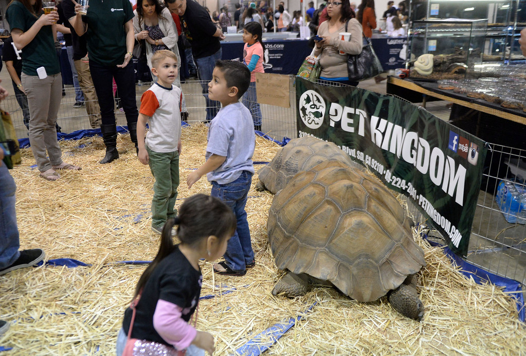 . Kids pet large turtles during the Reptile Super Show which is the world\'s largest reptile show with more than 500 tables of rare & unique animals including lizards, turtles, frogs, supplies at the Fairplex in Pomona, Calif., on Saturday, Jan.4, 2014.   (Keith Birmingham Pasadena Star-News)