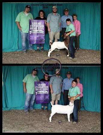 County Line Livestock Expo 2020
