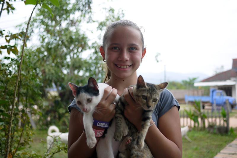 Ana bonds with the cute kitties at the Jumbo Guesthouse in Hongsa, Laos.