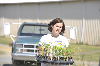 28382 - Jennifer Hawkings Agronomy Farm for WVUTODAY