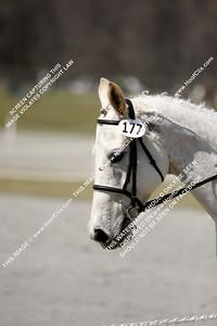 100328 USEA Horse Trial