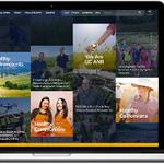 Site Redesign for California University