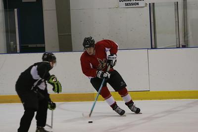FOOLS OF OZ Hockey Game