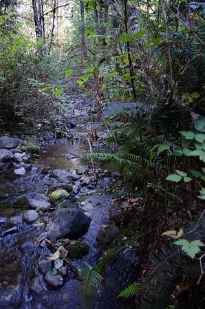 Cherry Creek Nature hike and waterfall