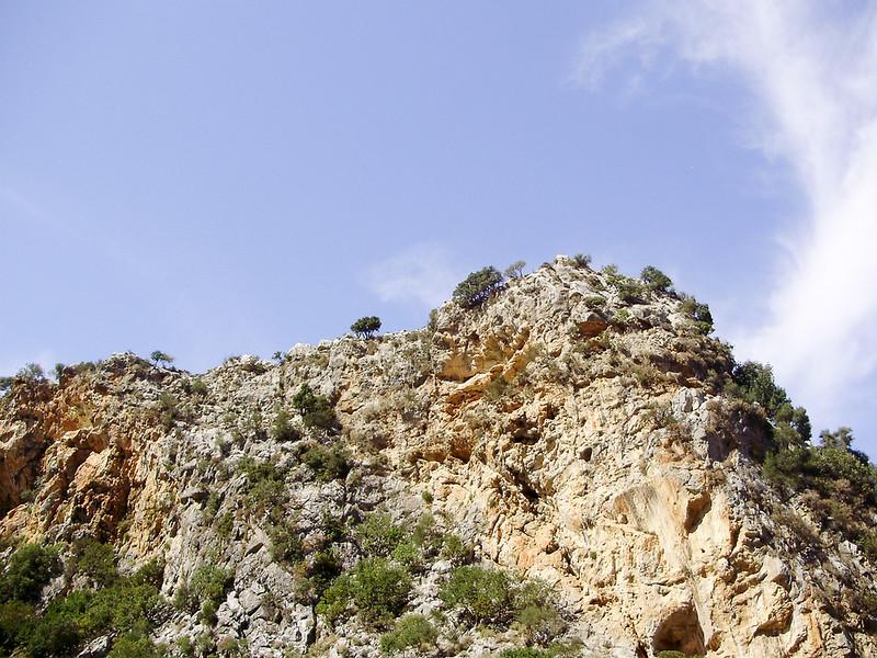 19-De-rots-waar-de-Vale-Gieren-landen-en-opstijgen.JPG