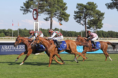 Shadwell - Criterium des Pouliches Gr2PA 1900m