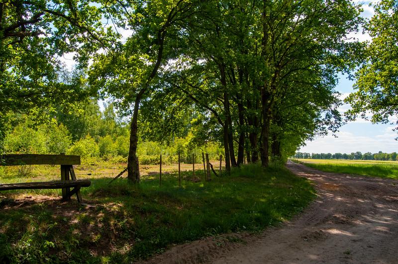 GrensPark Kempen~Broek, omgeving Stramprooierbroek & St.-Maartensheide 08.jpg