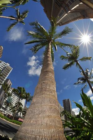 Oahu - September 2009