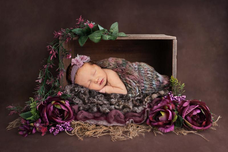Stella Newborn 2020