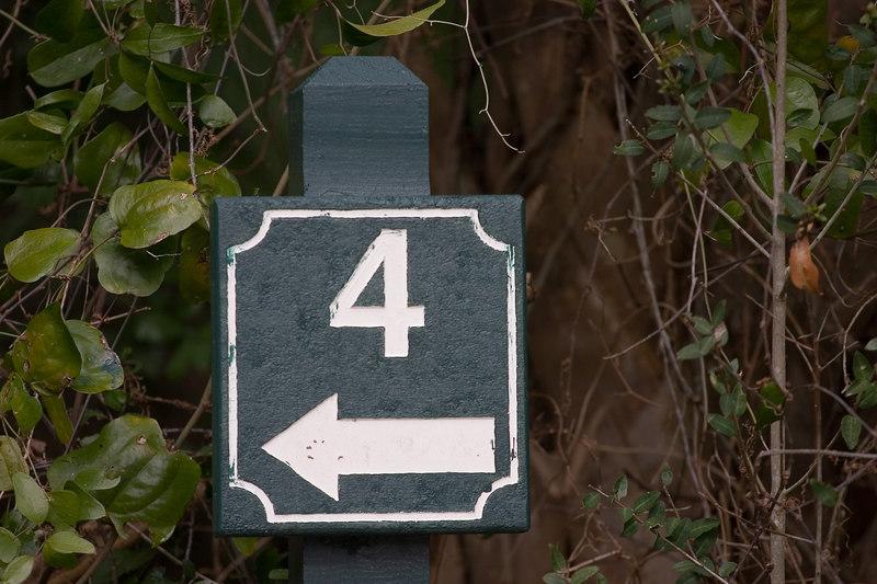 Cougar Point82.jpg